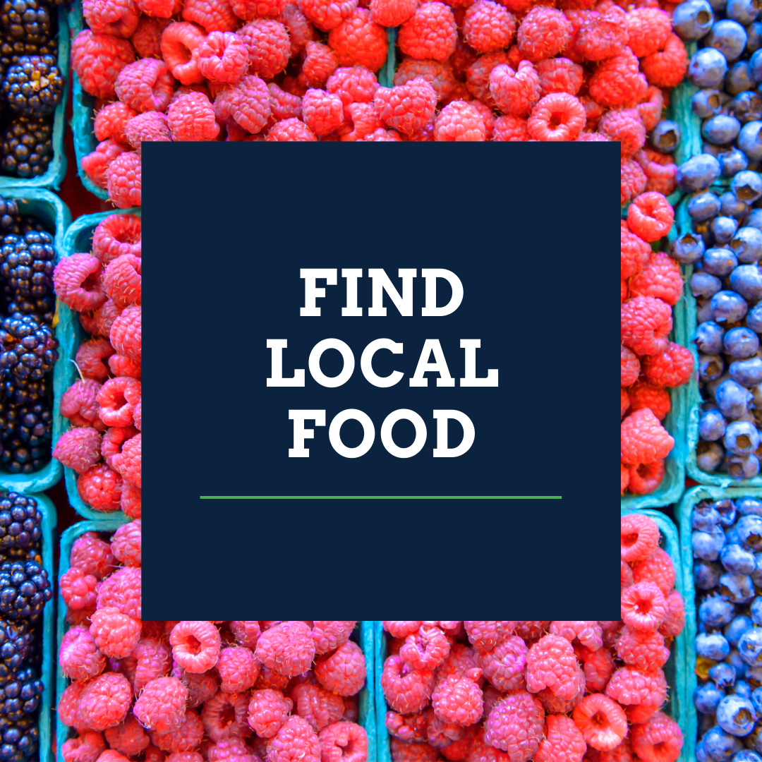 find local food over collage of blackberries, raspberries and blueberries