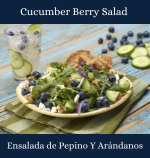 Cucumber Berry Salad